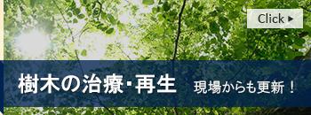 樹木治療・再生